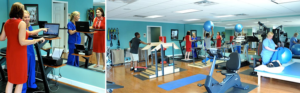Michigan Brain & Spine Physical Therapy And Rehabilitation